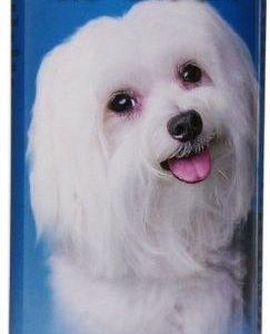 front view Bio-groom super white shampoo for dogs